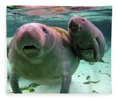 Manatee Mom And Calf Fleece Blanket