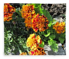 Marigolds In Prison Fleece Blanket