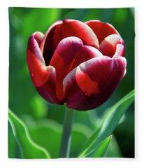 Maroon Tulip Fleece Blanket
