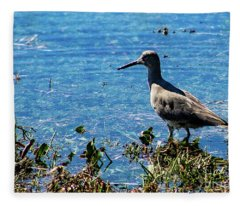 Willet Fleece Blanket