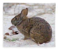 Marsh Rabbit On Dune Fleece Blanket