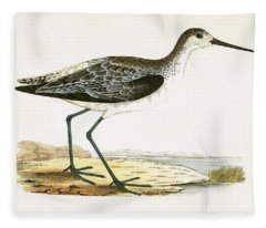 Marsh Sandpiper Fleece Blanket