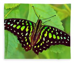 Marvelous Malachite Butterfly 2 Fleece Blanket