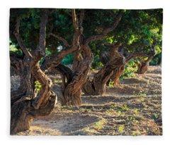 Mastic Tree   Fleece Blanket