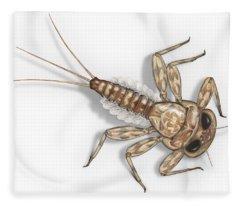 Mayfly Larva Nymph Rithorgena Ecdyonurus Venosus - Moscas De May Fleece Blanket