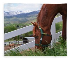 Mccool Grazing Fleece Blanket
