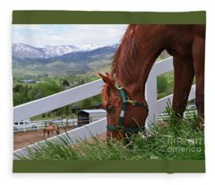 Mccool Grazing Fleece Blanket