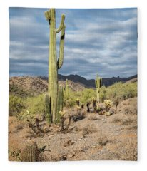 Mcdowell Cactus Fleece Blanket