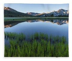 Meadow Reflections  Fleece Blanket