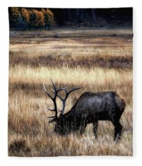 Meadows Of Horseshoe Park  Fleece Blanket