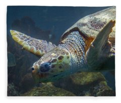 Meandering Green Sea Turtle Fleece Blanket