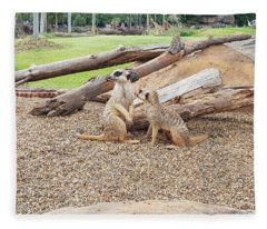 Meerkats  Fleece Blanket