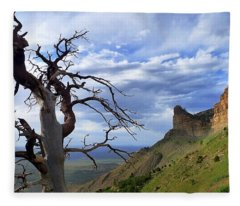 Fleece Blanket featuring the photograph Mesa Verde Mood by Skip Hunt