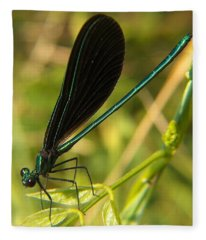 Michigan Damselfly Fleece Blanket