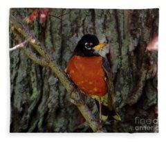 Michigan State Bird Robin Fleece Blanket