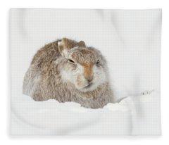 Miffed Mountain Hare Fleece Blanket