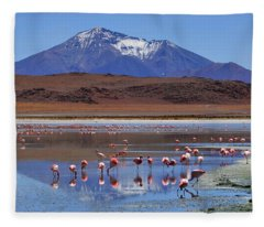 Fleece Blanket featuring the photograph Mirage by Skip Hunt