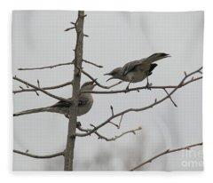 Mockingbirds Talk It Out Fleece Blanket