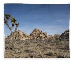 Mohave Desert Fleece Blanket