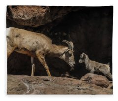 Mom N Baby Desert Big Horn Sheep Fleece Blanket
