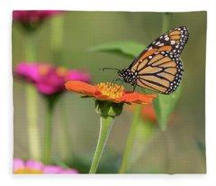 Monarch 2018-10 Fleece Blanket