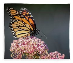 Monarch 2018-6 Fleece Blanket