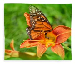 Monarch Minutes Fleece Blanket