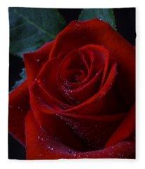 Moody Red Rose Fleece Blanket