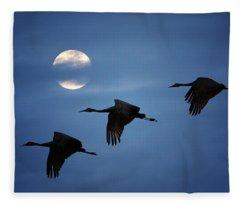 Moonlit Flight Fleece Blanket