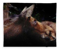 Moonlit Moose Fleece Blanket