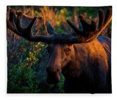 Moose Sunrise Fleece Blanket