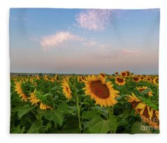 Morning Along The Sunflower Fields Fleece Blanket