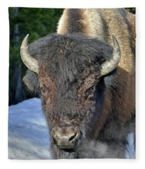 Morning Bison Fleece Blanket