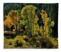 Morning Cottonwoods Fleece Blanket