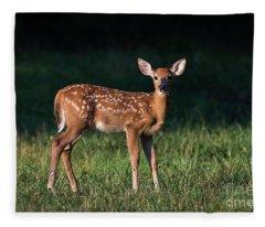 Morning Fawn Fleece Blanket