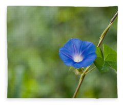 Morning Glory Fleece Blanket