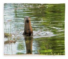 Morning Otter Encounter Fleece Blanket