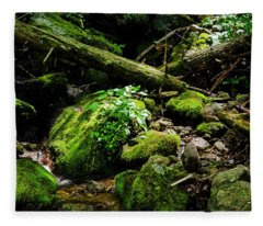 Moss At Wigwam Falls Fleece Blanket