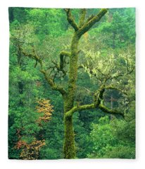 Moss Draped Oak Quercus Spp Central California Fleece Blanket