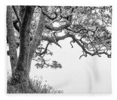 Mossy Tree Fleece Blanket