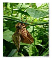 Moth At Rest Fleece Blanket