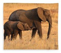 Mother And Baby Elephants Fleece Blanket