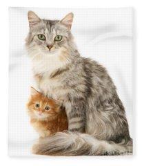 Mother Cat And Ginger Kitten Fleece Blanket