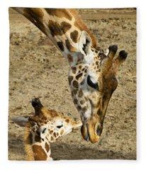 Mother Giraffe With Her Baby Fleece Blanket