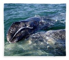 Mother Grey Whale And Baby Calf Fleece Blanket