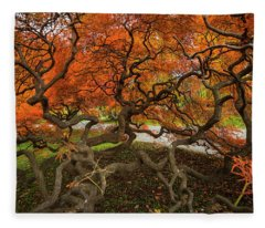 Mount Auburn Cemetery Beautiful Japanese Maple Tree Orange Autumn Colors Branches Fleece Blanket