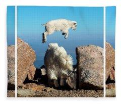 Mountain Goat Leap-frog Triptych Fleece Blanket