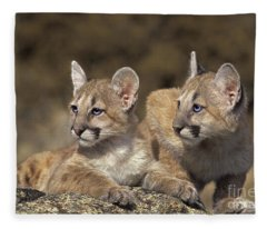 Mountain Lion Cubs On Rock Outcrop Fleece Blanket