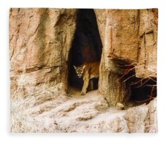 Mountain Lion In The Desert Fleece Blanket