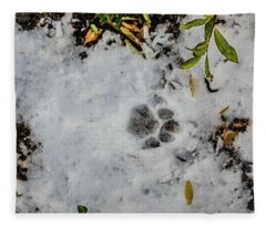 Mountain Lion Tracks In Snow Fleece Blanket